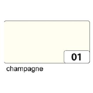 Fotokarton Folia 2zijdig 50x70cm 300gr Nr01 Champagne